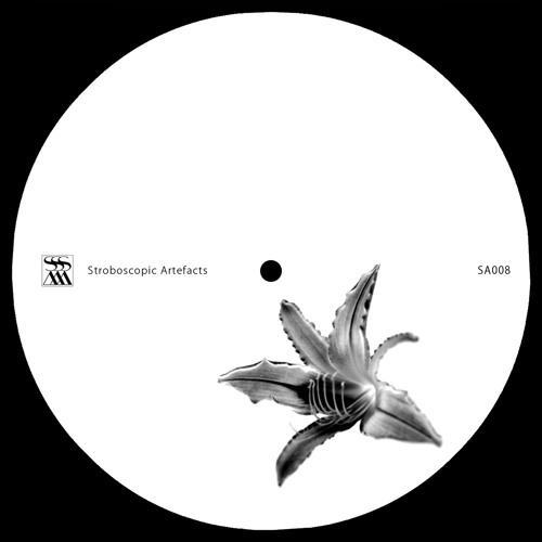 Lucy 'Beelines For Working Bees' [SA008]