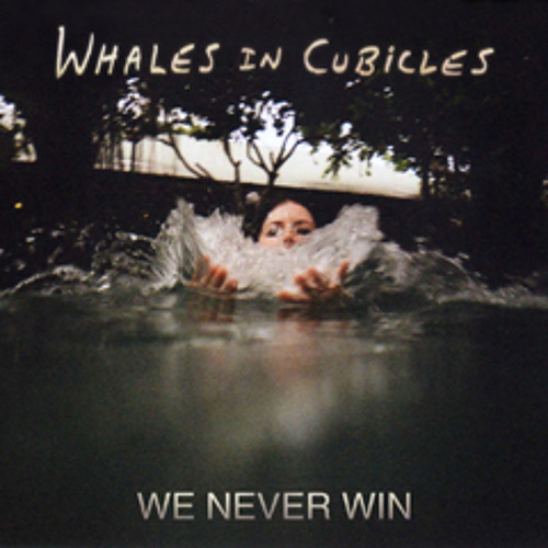 We Never Win - Whales In Cubicles