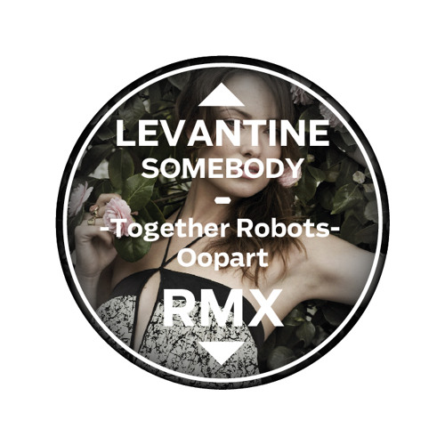 Levantine - Somebody (Together Robots Oopart RMX)