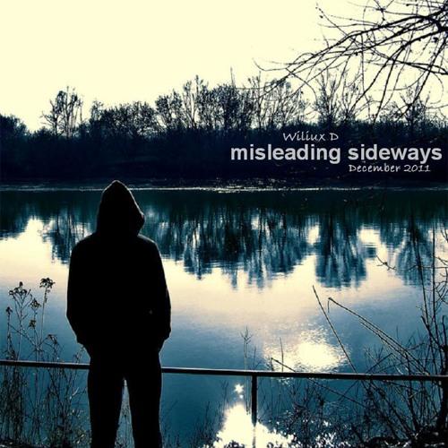 Wiliux D - Misleading Sideways (December 2011)