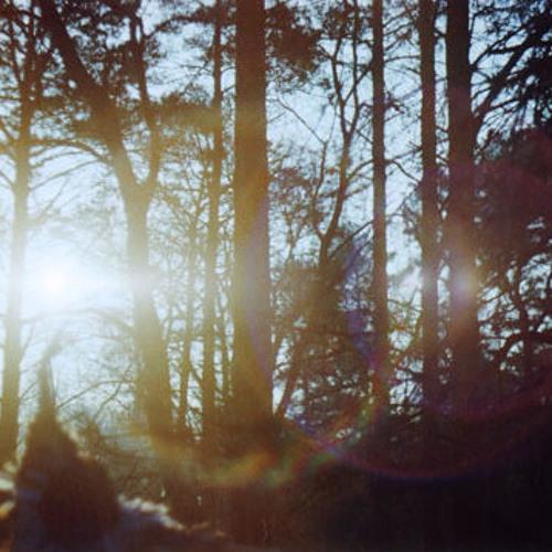 The Distant Sun