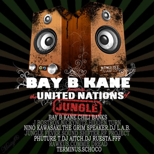 Schoco - iRave [Junglist Manifesto: BAY B KANE presents The United Nations Of Jungle]