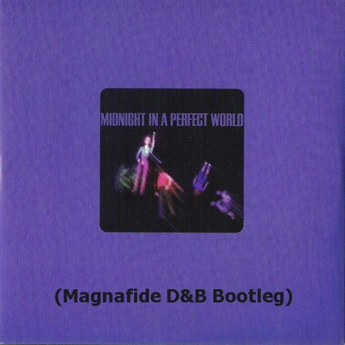 DJ Shadow - 'Midnight in a Perfect World' (Magnafide D&B Bootleg) FREE DOWNLOAD