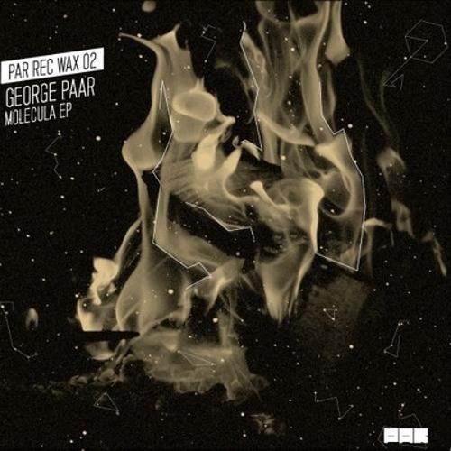 PAR REC WAX 02 - Damien Schneider remix - Molecula by George Paar