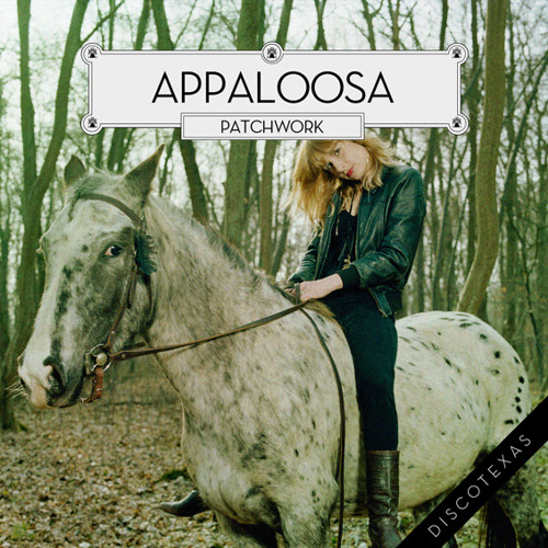 DT017 - Appaloosa - Patchwork