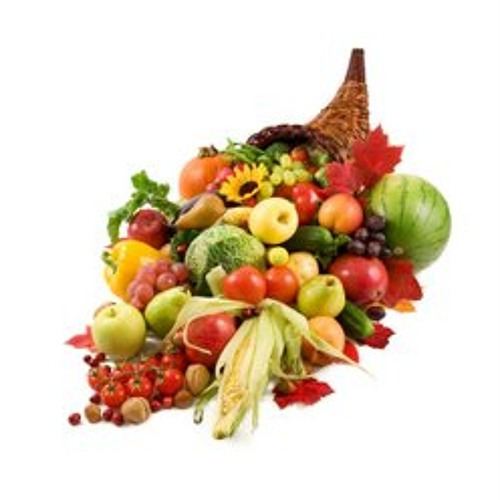 JMC155 Final - Fruit Cornucopia