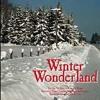 Winter wonderland- jazz cover
