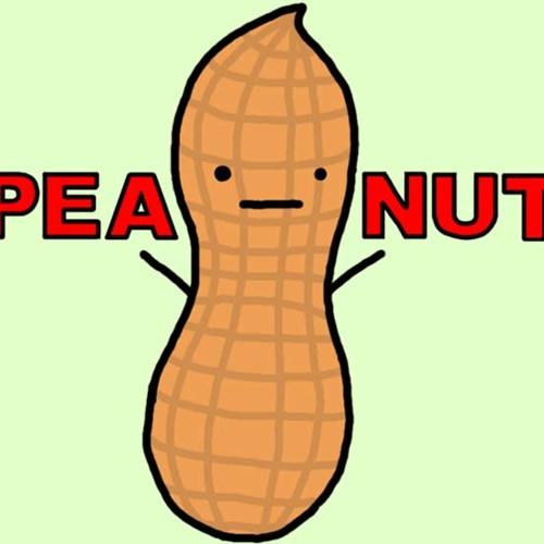 Dash Total'D - Peanuts