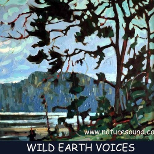 #SCstory: Wild Earth Voices