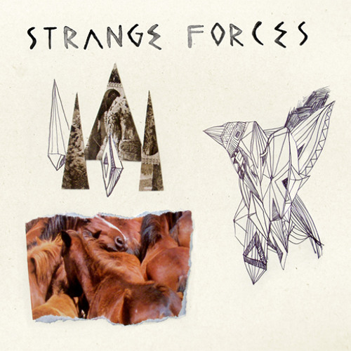 STRANGE FORCES 'Shizer In The Shadows'
