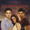 Carter Burwell - A Nova Vida BREAKING DAWN PART 1 - SOUNDTRACK