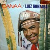 [Download] Luiz Gonzaga MP3