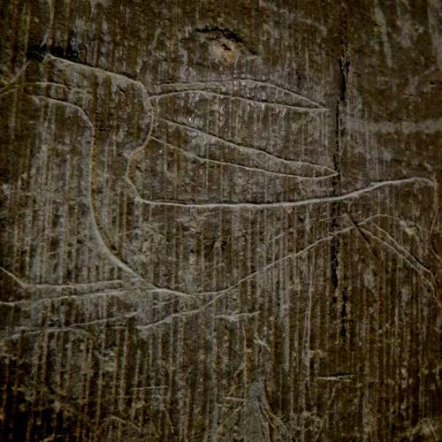 Owld Grye & The Innocent Hare : 1-12-11