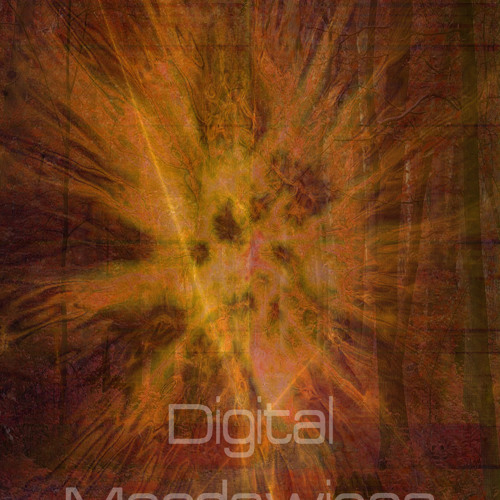 Digital Moodswings