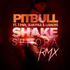 Pitbull Ft. T-Pain & Sean Paul - Shake Senora(Jay BiJaRr & Alessandro Zanes Bootleg)