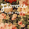 Shake It Up Cover by Florence And The Machine