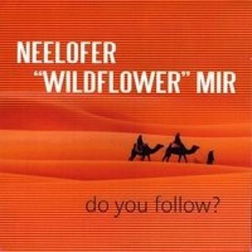 Do You Follow