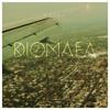 Dionaea ☂ Carrier/Meraquo