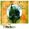 [Beatset 1] Bengladesh - Trifectum