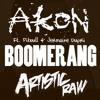 DJ Felli Fel feat. Akon, Pitbull & Jermaine Dupri - Boomerang (Artistic Raw Bootleg)