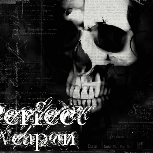Perfect Weapon (Original Mix)