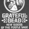 Grateful Dead - 1973-05-20 (T11)   They Love Each Other