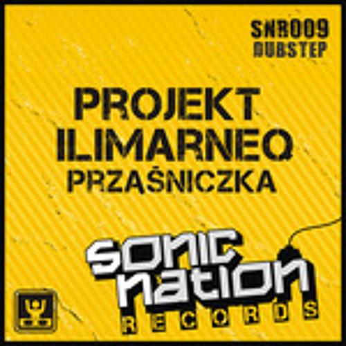 Projekt ilimarneq - Przasniczka (SNR009)