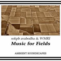 Music for Fields (feat. WMRI) [album sampler]