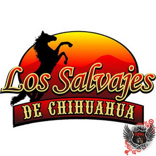 SALVAJES DE CHIHUAHUA