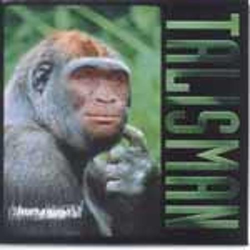 Dan Panza & Dave Rimmer - Colour My XTC (Talisman Cover)