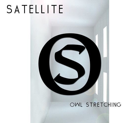 Owl Stretching - Satellite
