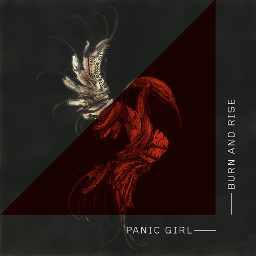 Panic Girl - When It Hurts (Skyence Remix) (Snippet)