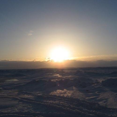Tundra Sunrise