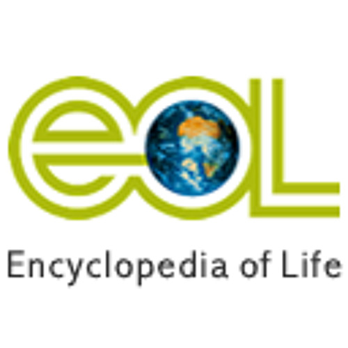 The Encyclopedia of Life