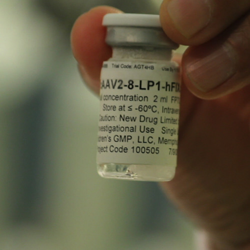 Haemophila B gene therapy breakthrough
