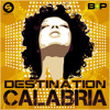 Alex Gaudino, Greedy Swede & Enur feat. Natasja - Destination Calabria (Brazilian Playboys Bootleg)