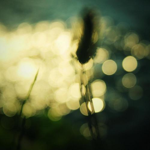 Rhian Sheehan - Whispering Goodbye