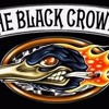 The Black Crowes - Feelin' Alright mp3