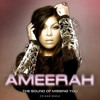 Ameerah - Sound Of Missing You