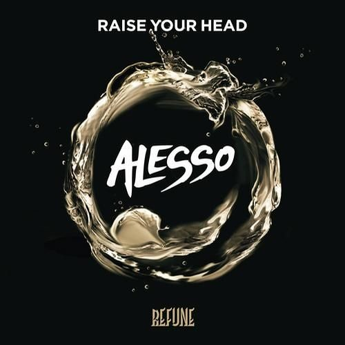 Raise your head - Alesso (basic edit )
