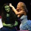 Popular wicked Musical cover