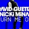 Turn Me On (David Guetta & Laidback Luke Remix)