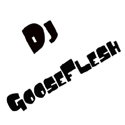 30 MinMix (House/Electro) Vol. 1 - DJ GooseFlesh