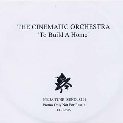 Cinematic Orchestra-To build a Home (Mario Reder)
