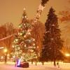 Colinde de Crăciun-Christmas Carols