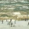 044: Electronic Snowflakes
