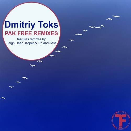 Dmitriy Toks - feel so free (Koper & Tin official remix)