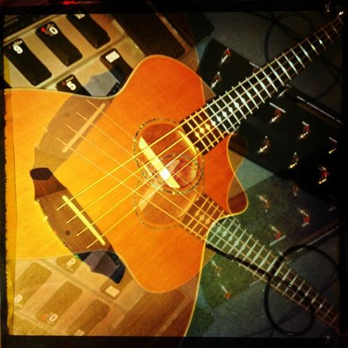 Breedlove Acoustic Demo #1