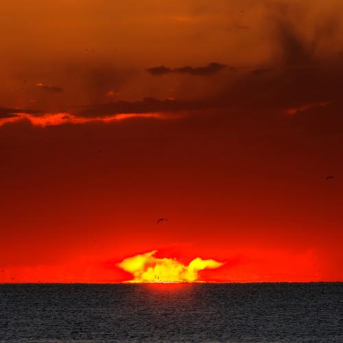 Dubspector - Dread At Sunrise Instrumental