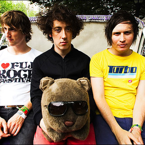 Anti-D by the Wombats: A cover